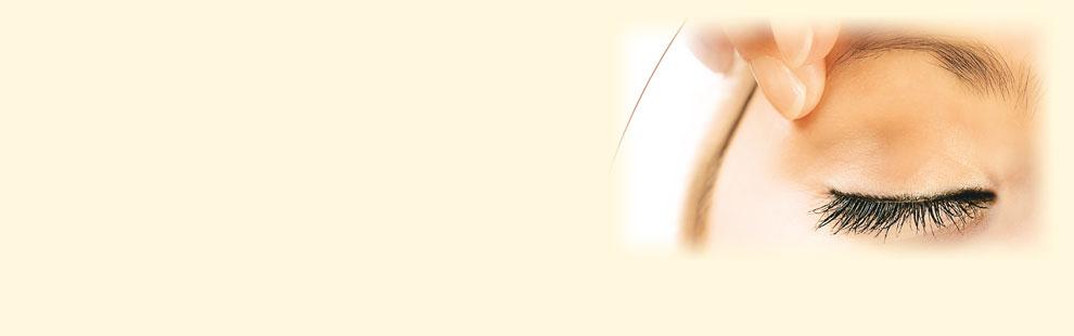 Kopfbild für Startseite